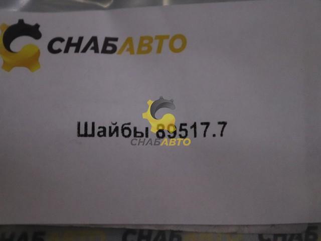 Шайбы 89517.7
