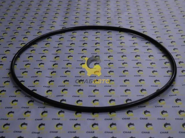 Кольцо уплотнительное 204456A